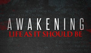 Awakening: Life As It Should Be